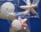 Chocolate Nautical Sea Shell Seashell Gift Box Inserts 10 Bags per lot