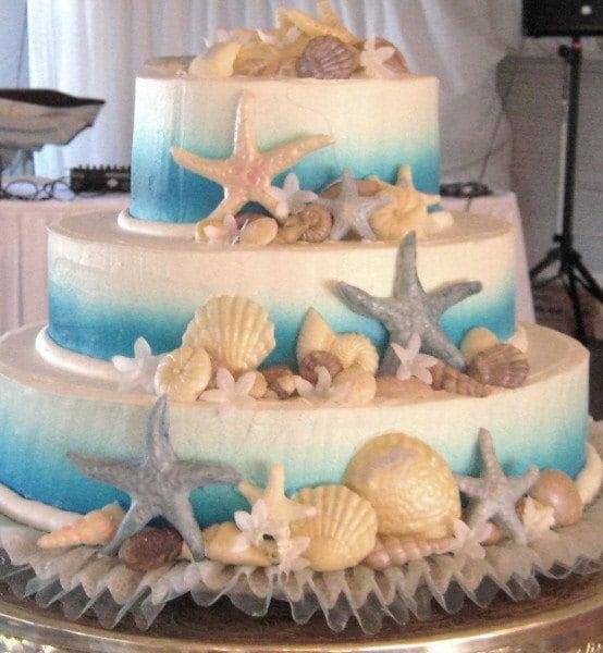 Etsy Wedding Cake Decorations : CHOCOLATE SEASHELL CAKE DECORATING KIT 50 60 SHELLS