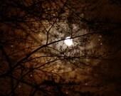 Night Sky Celestial Moon and Stars Fine Art Photograph Print 8 x 10