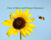 Cure  Bee  and  Wasp Phobia Apiphobia Hypnosis  CD or mp3 Download.