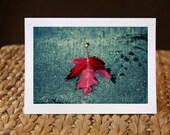 5x7 Photo greeting card