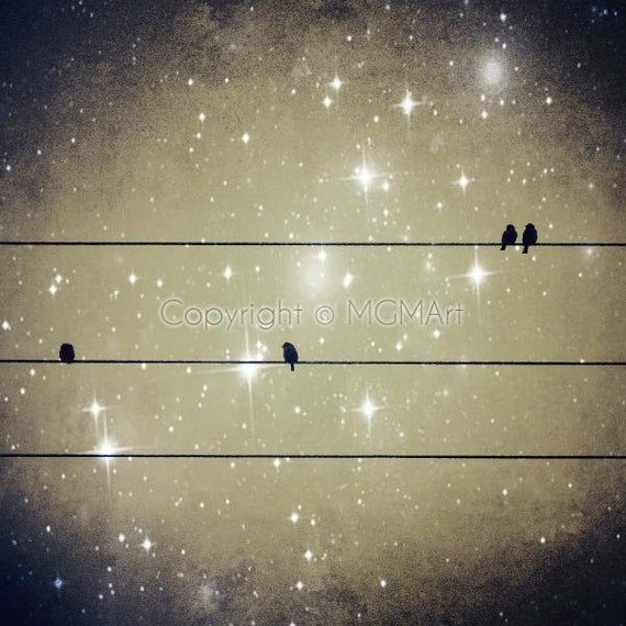 Dreams Reborn . surreal photography - visionary,wall art,office,home,birds,night,sky,sparkling,sparkle,stars,high,dreamy,vision,visionary
