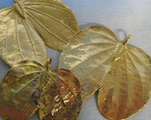 DeStAsH dEaL lot of 3 pendants of 24 karat gold plated actual real leaves with bails gold plated leaf pendant