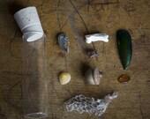 Miniature Cabinet of Curiosities 6
