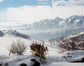 90% off Clearance: White- Original Signed Fine Art Winter Landscape Photograph, 8 x 10