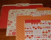 BIRDS AND FLOWERS decorative file folders...set of 4...keeps you organized...READY TO SHIP