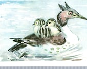 1970s Vintage Postcard of a L. Gamburger Duck and Chicks