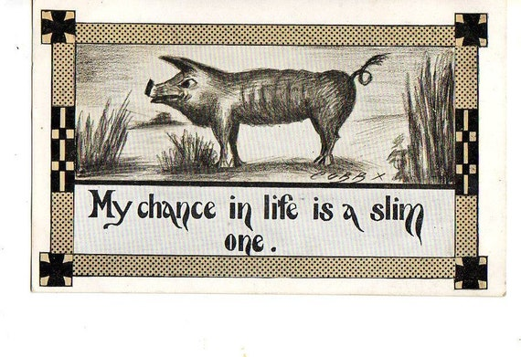 vintage Pig postcard - My chance in life is a slim one