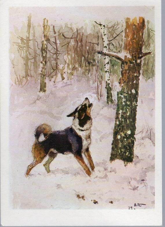 Russian  vintage postcard, dog barking up a pine tree