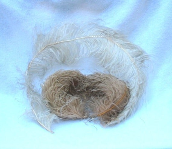 Edwardian Ostrich Feather Lot For Hats Hair Crafts