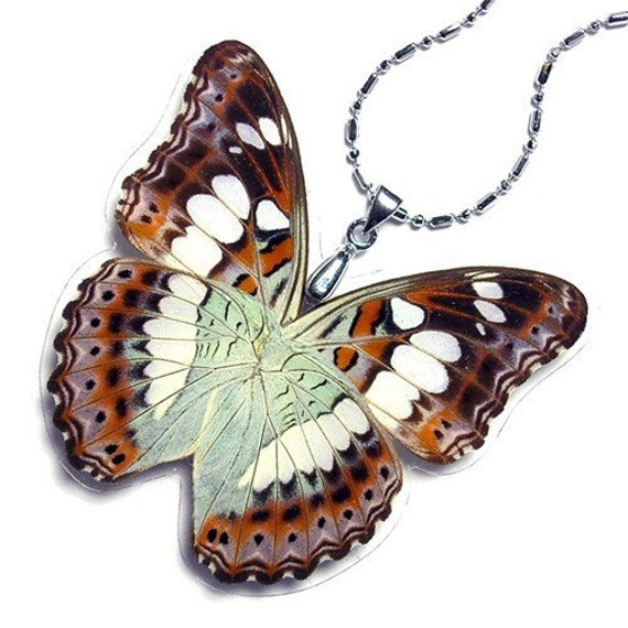 Real Butterfly Wing Necklace / Pendant (WHOLE Moduza Pocris Butterfly - W056) - Buy 2 Get 1 Free