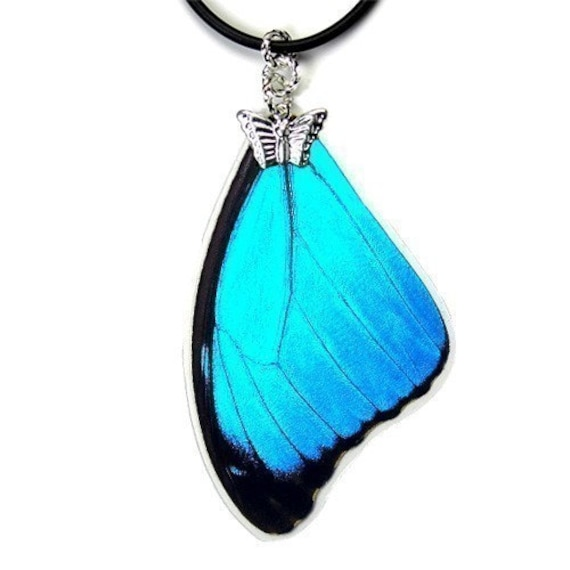 Real Butterfly Wing Necklace (Blue Morpho Menelaus Forewing - N056) - Buy 2 Get 1 Free