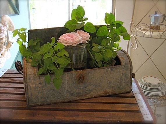 Antique French Zinc Botanical Box