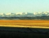 Montana Wheat - Fine Art Bookmark, 2x8.5