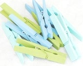 ocean hues painted clothespins - set of eight