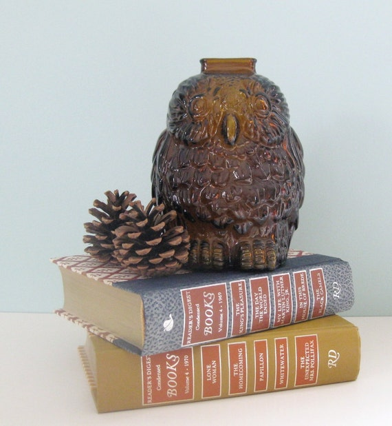 Owl bank amber glass woodland decor wise old owl - Wise old owl glass bank ...