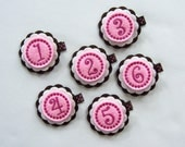 Pink, White and Chocolate Birthday Girl Felt Hair Clip - First, Second, Third, Fourth, Fifth, Sixth Birthday Clippies - You Pick Number