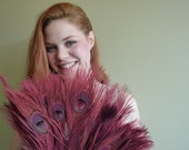 BLEACHED PEACOCK FEATHERS Mauve,  Antique Rust / 524 / Rollback