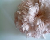 GOOSE COQUILLE Feathers,  Antique French Pink / 425