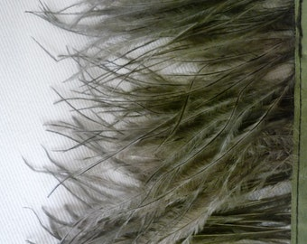 OSTRICH FEATHER FRINGE Smokey Sage Green  / 324
