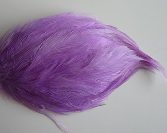 FEATHER PAD Lavender Purple / 70