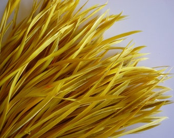 GOOSE BIOT FEATHERS / Canary Yellow  / 727