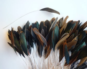 STRIPPED COQUE TAIL/ Bronze Rooster Tail, Natural  / 1132