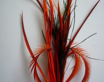 BIOT FEATHER SPRAY,  Two Tone, Burnt  and Carrot Orange / 5B