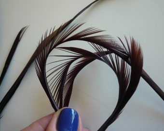 GOOSE BIOT FEATHERS/ Chocolate Brown  /  733