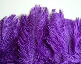 DELICATA OSTRICH PLUMES  , Purple / 2023