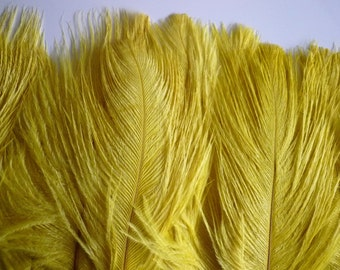 DELICATA OSTRICH PLUMES  , Chartreuse Yellow / 2022