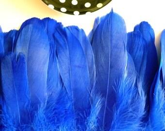 GOOSE FEATHER FRINGE,  Duke, Chagall , Cobalt  Blue /459