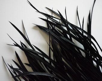GOOSE BIOT FEATHERS,  Darkest Black / 724