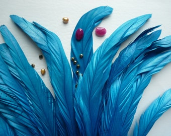 COQUE TAIL FEATHERS Loose / Satin Teal Blue   / 180