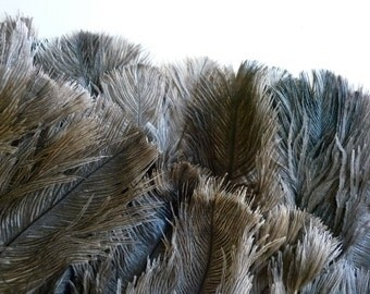 DELICATA PLUMES FRINGE , Grizzly,  Grey, natural, not dyed  / 2025