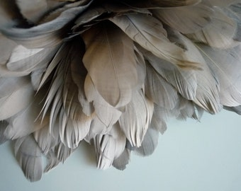 PRIMA GOOSE Feather, Exclusive  Quality, Beige and Grey mix Greige /  PR - 28
