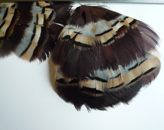 FEATHER PAD Partridge Feather Pad Exclusive Quality / 85