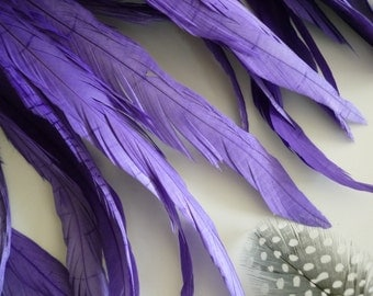 COQUE TAIL Feathers,  Loose / Lavender Purple, Violet  / 171
