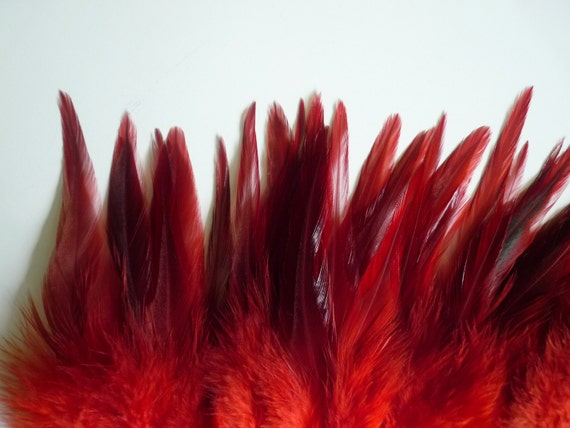 BELLA SADDLE FEATHERS,  Excellent  Quality  / Flamenco Red w darker tips  / 142