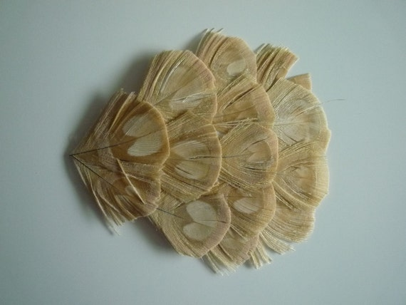FEATHER PAD  Bleached Peacock , Ivory, Bone / 96