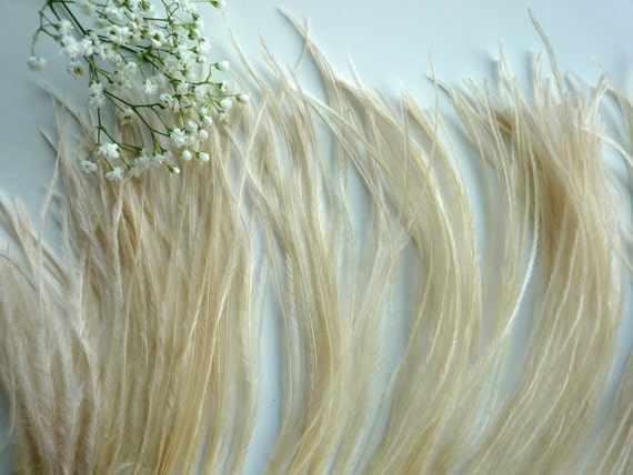 VOGUE OSTRICH Feather Fringe , True Champagne, Dark Ivory  /  334