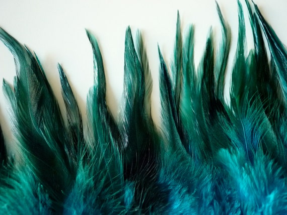 COQUE TAIL  Exclusive Quality / Peacock Teal Blue /  132