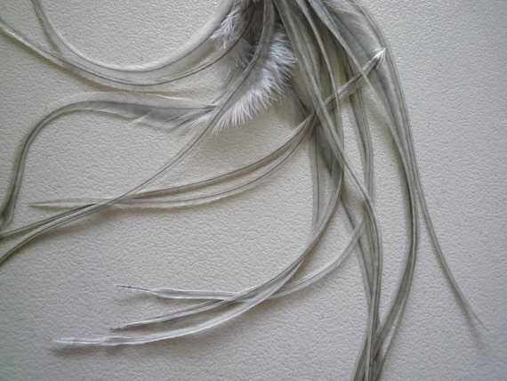 Long Rooster Feathers  / Dusk,  Grey Dun / AB