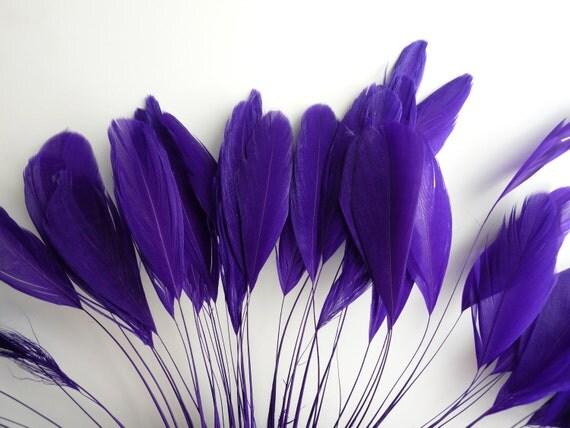 STRIPPED COQUE FEATHER / Regency, Dark Violet Purple /  1143