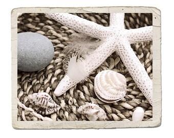 Sepia Still Life Photograph Beachcombing Fine Art -Starfish Feather Pebble Shells Ocean Sea Nature Beach Vintage Style