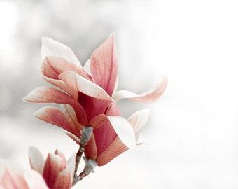 Pink Flower Baby Nursery Decor Magnolia Raspberry Dreamy Wall Print