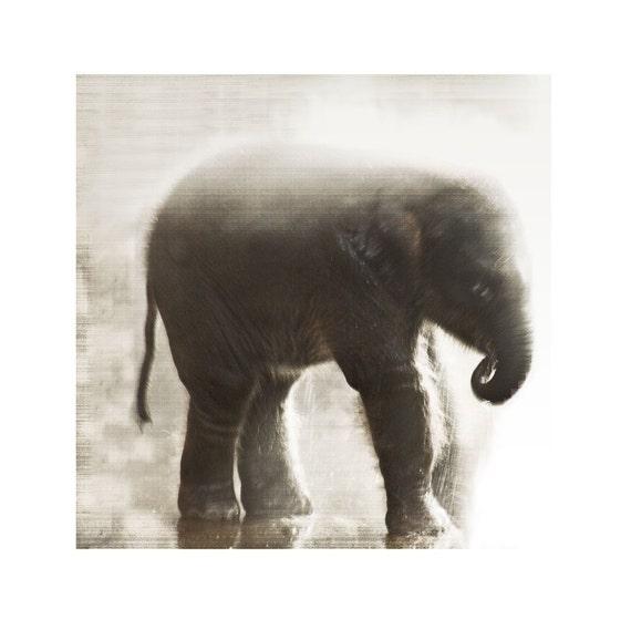 Elephant In The Mists Fine Art Photograph Sepia Baby Animal Asian Calf Nature Wildlife Print Safari Vintage Style