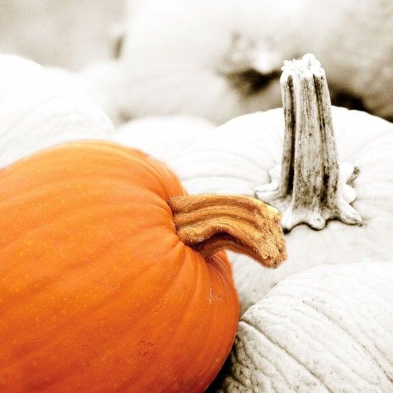 Special Sunday Etsy Picks: Pumpkins