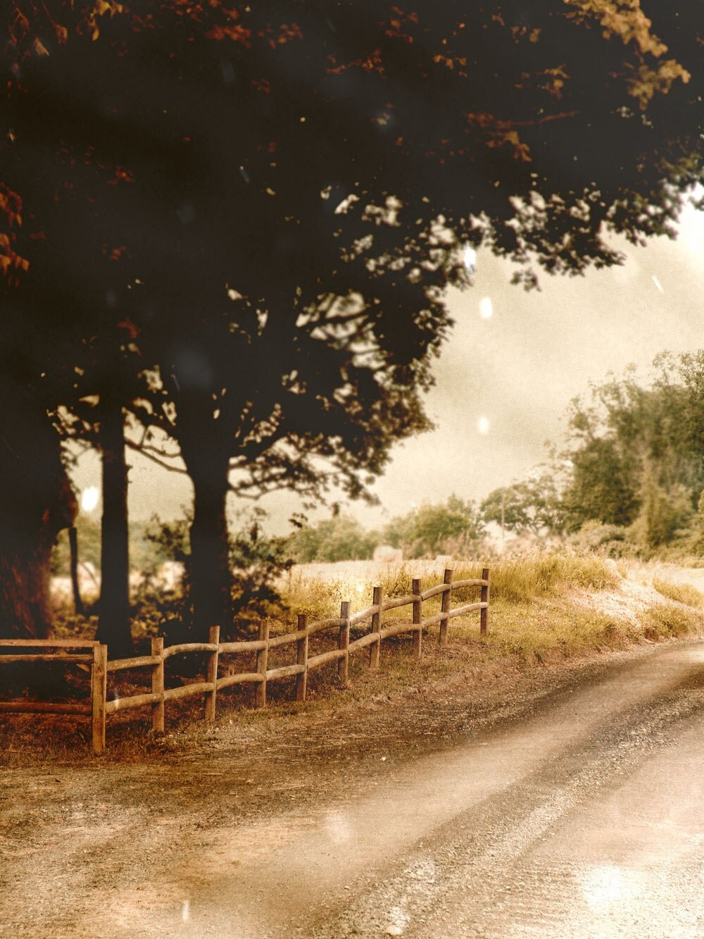Country Lane Fine Art Photograph Fence Tree Decor Rustic Sepia