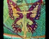 Fine Art Print - 8x8 - I'M NO ANGEL But I've Spread My Wings A Bit